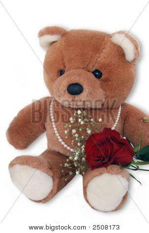 Beary Pretty