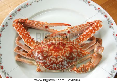 Cooked Crab