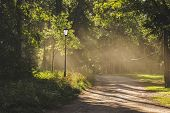 Morning Dawn In The Park, The Rays Of The Sun Illuminate The Alley, The Park Path, The Summer Park poster