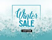 Winter Sale Vector Banner With  White Snowflakes Elements And Winter Sale Text In Blue Snow Backgrou poster