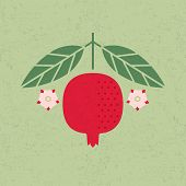 Pomegranate Illustration. Pomegranate With Leaves And Flowers On Shabby Background. Flat Design. Ori poster
