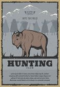 Hunting Club Or Hunter Open Season Vintage Poster Of Buffalo Or Bison In Snow Mountains. Vector Retr poster