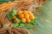 Apricots On Wooden Table poster