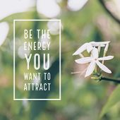 Inspirational Motivational Quote be The Energy You Want To Attract. With White Flowers Background. poster