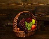 Grapes And Apples In Wicker Basket. Harvest And Gardening Concept. Basket Full Of Homegrown Autumn F poster