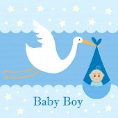picture of stork  - Baby Boy Card  - JPG