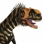 Rajasaurus Dinosaur Head 3d Illustration - Rajasaurus Was A Carnivorous Theropod Dinosaur That Lived poster