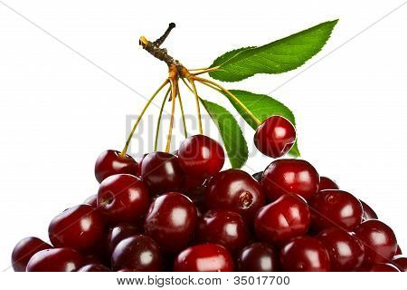 Ripe Juicy Cherries