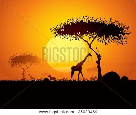 Tranquil sunset scene in africa.  Silhouette animals and trees in africa sunset background.