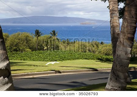 View From Wailea Golf Course