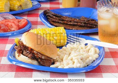 Picnic Lunch With Barbecue Beef