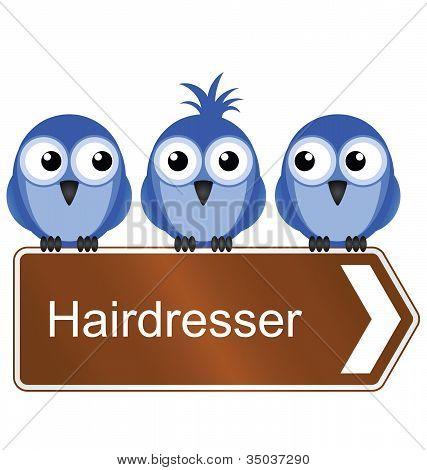 Bird hairdresser