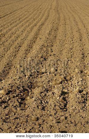 agricultural soil