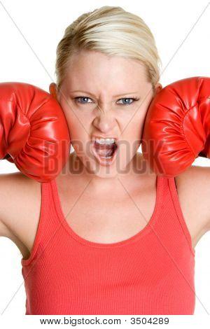 Aggressive Female Boxer