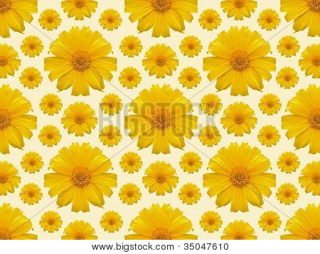 Yellow Flower Repeat Background