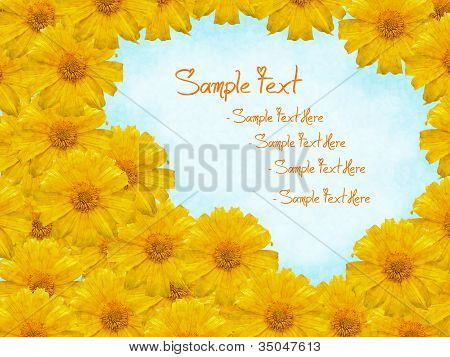 Mexican Sunflower Weed Photo Frame