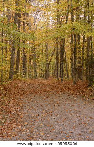 Hiking Taril in Fall