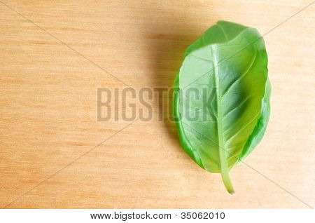 Single Basil Leaf On Wood