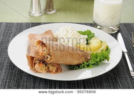 Salmon Wrap With Cottage Cheese