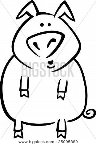 Cartoon Pig For Coloring Page
