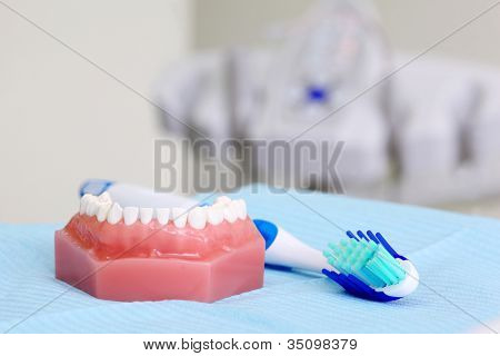 Artificial jaw and blue toothbrush are on table in dental clinic. Shallow DOF.