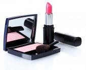 make-up blusher and pink lipstik isolated on white poster
