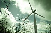image of wind-turbine  - A wind turbine shot from a low angle - JPG