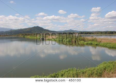 Sewage Treatment Ponds