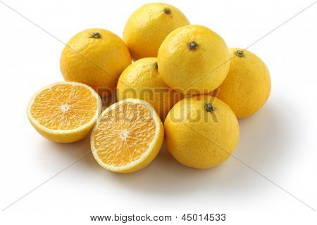 shonan gold, japanese new citrus, a hybrid citrus of satsuma orange and golden orange.