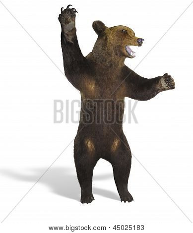 Growling Angry Brown Bear Isolated Over White