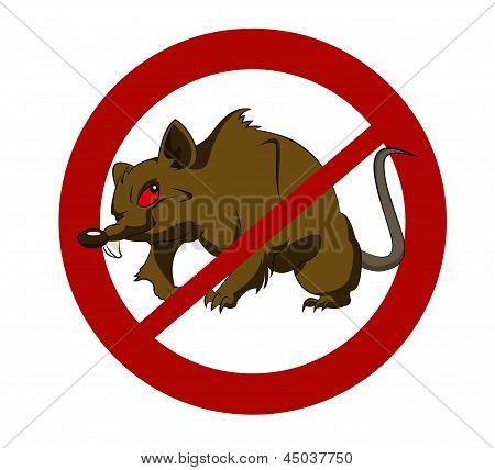No Big Rats