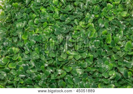 Plastic Green Grass