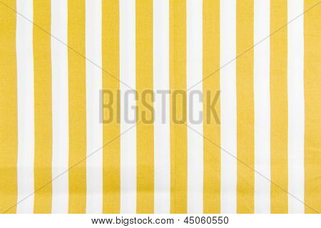 Yellow Line Fabric