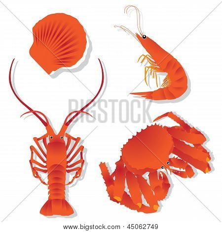 Seafood: Shrimp, Crawfish, Crab, Scallops