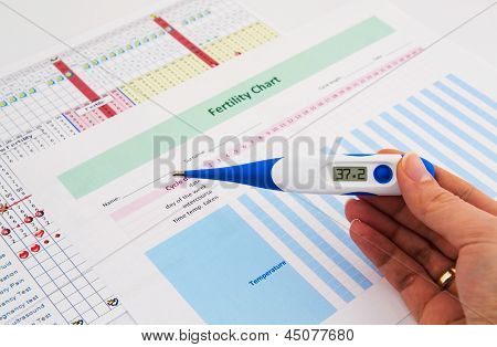 Electronic Thermometer In Woman Hand. Fertility Concept