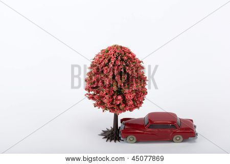 A red Car Crashed A Tree