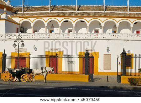 Pferd-Coach bei Sevilla Stierkampfarena