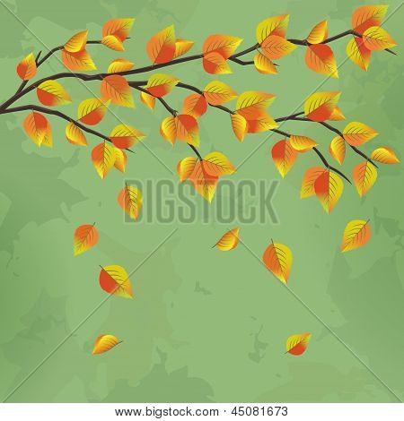 Vintage Autumn Background With Tree Branch