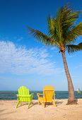 stock photo of florida-orange  - Summer scene with colorful lounge chairs on a tropical beach in Florida with palm tree and blue sky - JPG