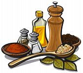 stock photo of salt shaker  - illustration of different kind of spices and oil - JPG