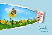 Ripped paper background with dandelions field a butterfly. Vector.