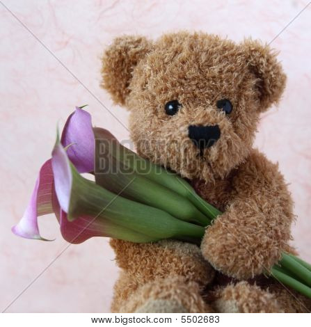 Teddy With Calla Lilies