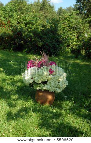 Terracota Flower Pot