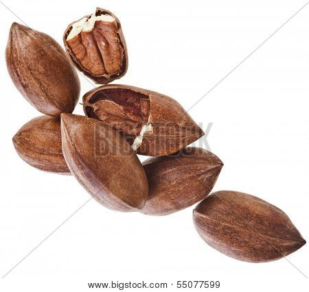 Pecan nuts pile heap close up, isolated on white background
