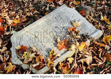Damaged Tomb In Forgotten And Unkempt Jewish Cemetery