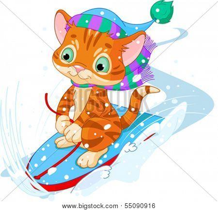 Cute kitten sledding downhill winter snow mountain