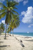 picture of nudist beach  - Hawsksbill Bay is a romantic - JPG