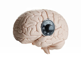 stock photo of cognitive  - Human brain model with a dial lock - JPG