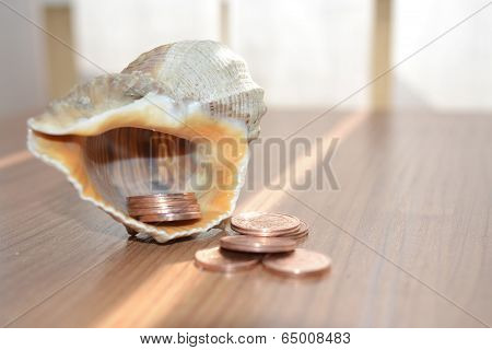 Money And Shell