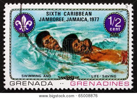 Postage Stamp Grenada 1977 Swimming And Life Saving